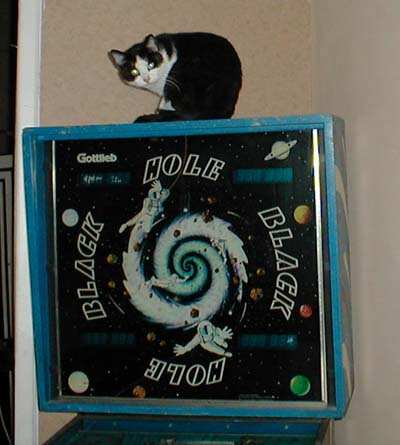 cat on black hole pinball machine
